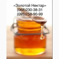 Купим мед у пчеловодов на выгодных условиях