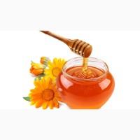 Куплю мед в Кировоградской обл
