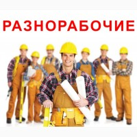 Разнорабочий 2500-3000 злотых. Работа в Польше