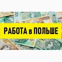 ТРУДОУСТРОЙСТВО в Польше. Свежие вакансии для мужчин