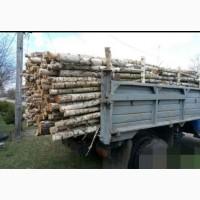 Продам дрова рубаные, кругляк, обрезки разных пород