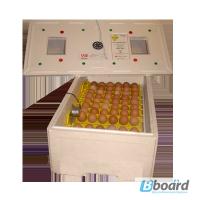 Инкубатор ИБМ-100 Э А
