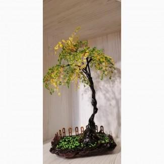 Купить дерево недорого, декоративное красивое дерево Киев
