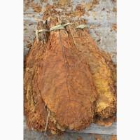Продам табак листовой