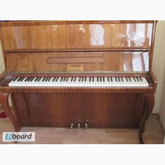 Купить белое пианино в Киеве. Восторг от ярко белого пианино для гостиной
