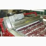 Машина для удаления косточек из вишни, сливы, абрикоса 1600 - 2600 кг/час