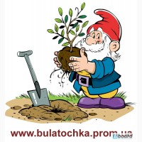 Мотоблок БУЛАТ ВТ900 (бензин 7, 0 л.с.), мотоблоки WEIMA (Вейма) в Украине