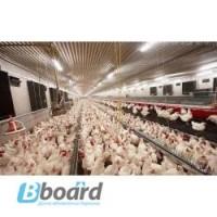 Оборудование для содержания птицы (Испания)