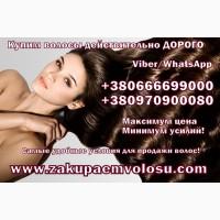 Продать волосы в Харькове дорого Куплю волосы Харьков Скупка волос