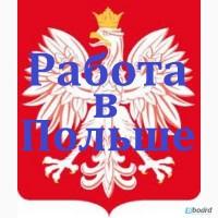 Визовая поддержка для открытия польской рабочей визы