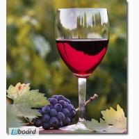 Бентонит для очистки вина и браги