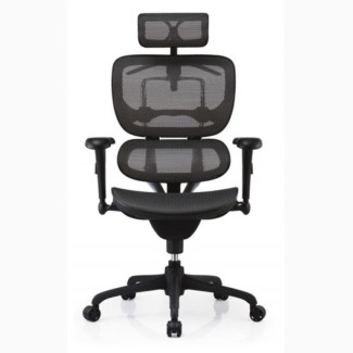 Кресло офисное ERGOHUMAN Black спинка/сетка, сидение/ткань