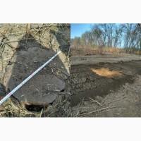 Очистка территории от поросли, пней и корней деревьев