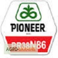 Кукуруза Пионер ПР38Н86