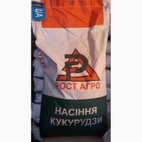Семена кукузуры РостАгро - Галатея, Хотин, Збруч, МАГ, Кремень, Рубин, Аджамка