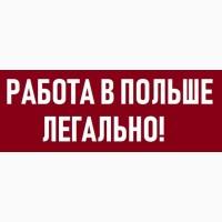 На роботу в Польщу запрошуємо ЕЛЕКТРИКІВ