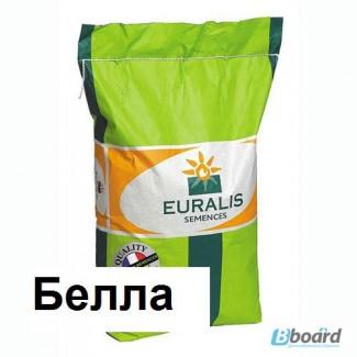 Семена подсолнечника Евралис Белла (Euralis Bella)