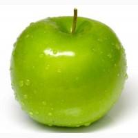 Продаю яблоки, груши урожай 2018 г