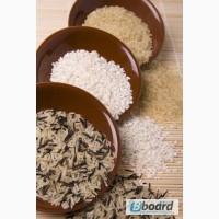 Продам рис оптом Украина, Пакистан