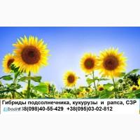 Семена Тунка, Брио, Неома, ПР64Е71, ПР63А90, дкс2960, дк315, СЗР и др
