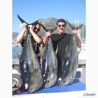 Шквал эмоций и гигантские трофеи - все это рыбалка в Южной Африке