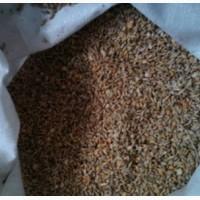 Зерносмесь ячмень и пшеница в Харькове