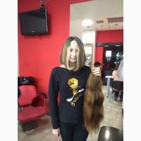 Продать волосы в Новомосковске дорого- очень просто