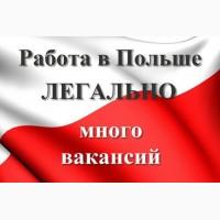 Легальная работа в Польше