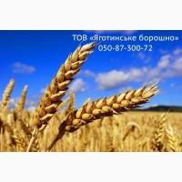 Продам борошно пшеничне в/г, 1г