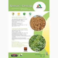 Реализуем семена сои Сенсор(115дн), Монро(85дн) устойчивой к РаундАпу