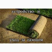 Устройство газона, рулонный газон
