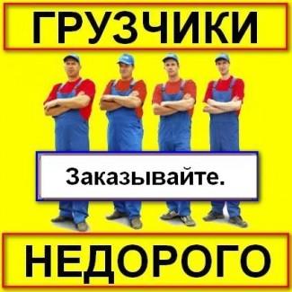 Предоставляем авто услуги с грузчиками недорого