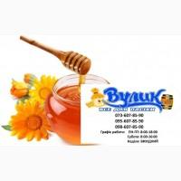 Куплю мед оптом дорого від 300 кг Одеська обл