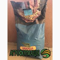 Семена кукурузы Монсанто ДКС 3511