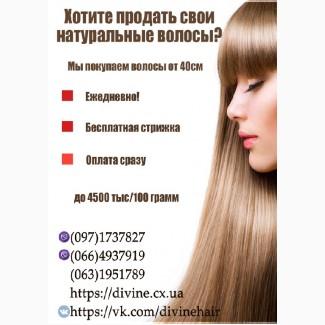 Купим волосы в Харькове. Продать волосы без пересылки в день обращения