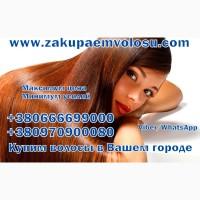 Продать волосы в Одессе, купим волосы Одесса !!! ищите где дорого продать свои волосы