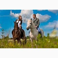 Конные прогулки Киев. Конная прогулка на лошадях. Конные прогулки отдых