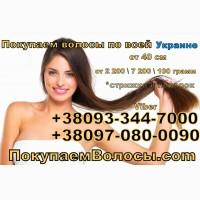Принимаем волосы в Днепропетровске, продать волосы ежедневно Днепр О933447000