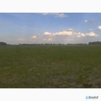 Продам земельный участок 7, 2597га в Киевской области село Юровка