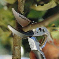 Профессиональная обрезка сада, удаление деревьев, корчевка пней