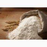 Агент/представитель, менеджер по закупке пшеничной муки, макароны, продукты питания