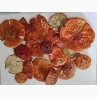 Мухоморы красные Amanita musaria