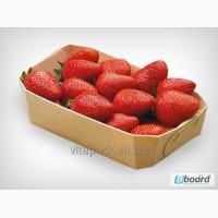 Эко био лотки- подложки из шпона для ягод