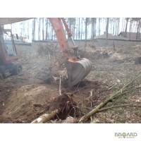 Корчевание пней Киев. Удаление пней Киев