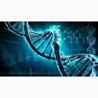 Восстановление организма при рассеянном склерозе