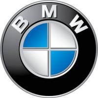 100% отчеты о пробеге и типе ремонта для автомобилей марок BMW, Audi