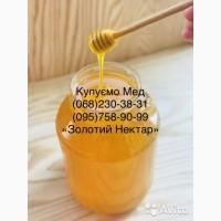 Оптовая закупка мёда Новый Буг (Николаевская область)