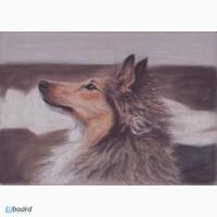 Портрет домашнего животного пастелью на заказ по Украине