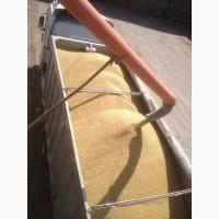 Самосвальные зерновозы. Контракт агро