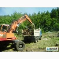 Расчистка участка, покос травы, спил деревьев, уборка и вывоз мусора